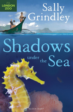 Shadows under the Sea