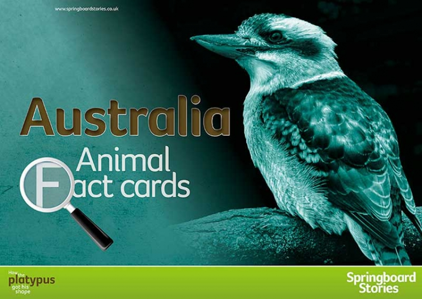 Australian fact cards primary resource