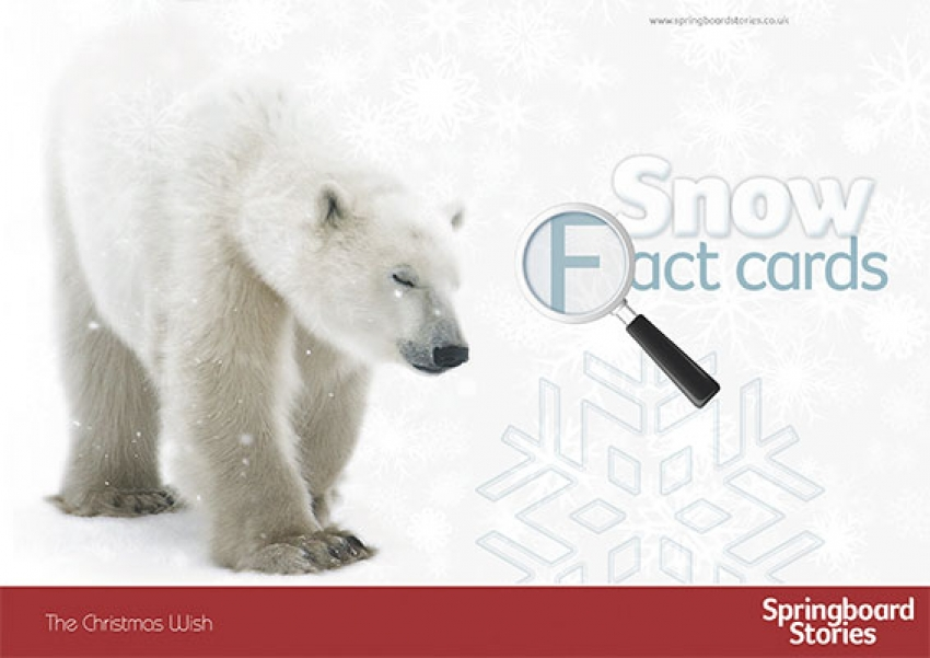 Snow fact card primary resource