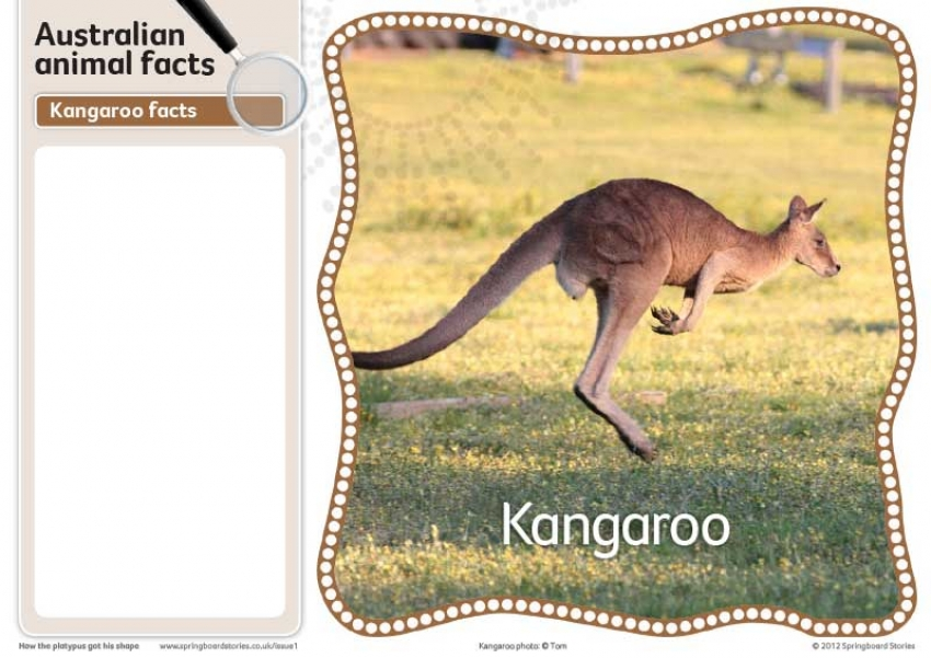 Australian fact cards - images