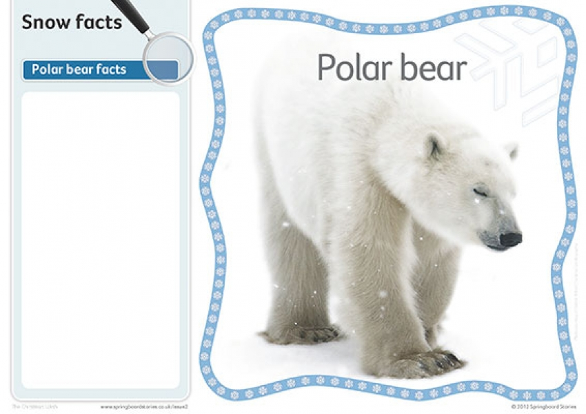 Snow fact cards – image only