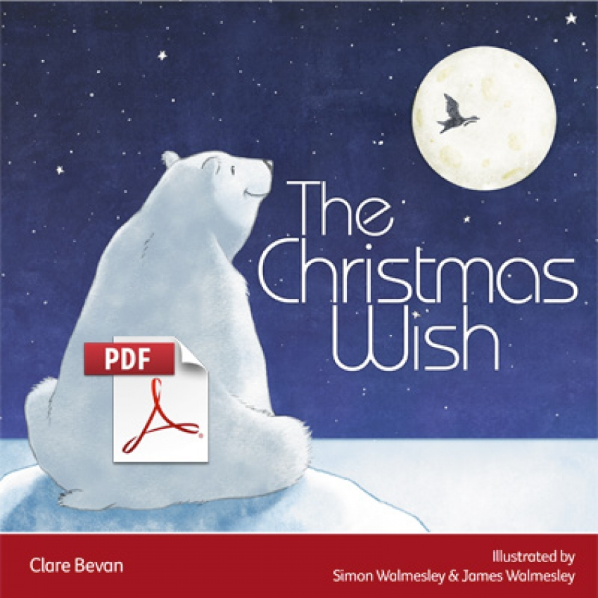 The Christmas Wish ebook