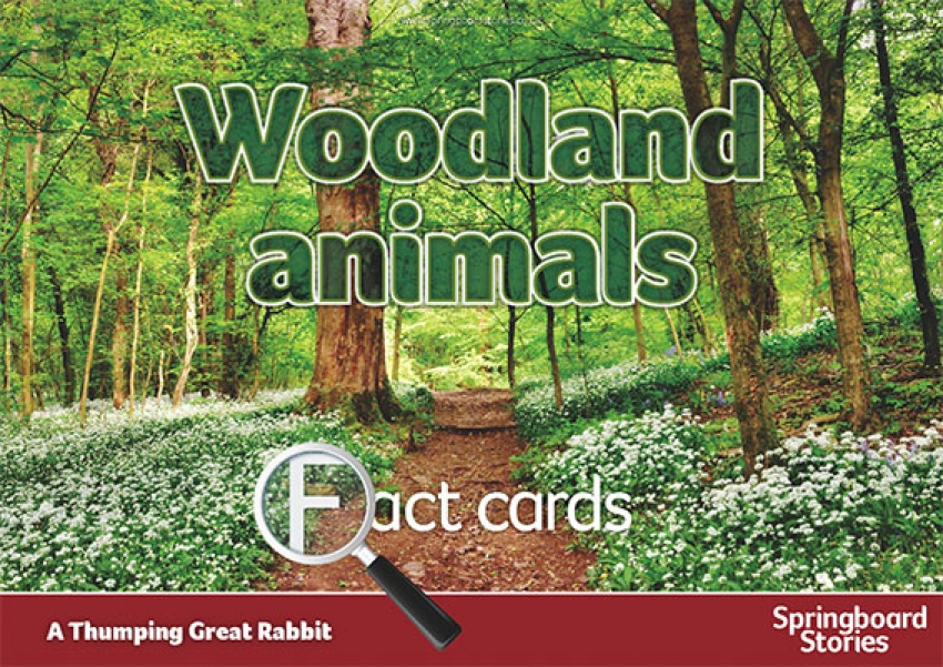 Woodland fact cards primary resource